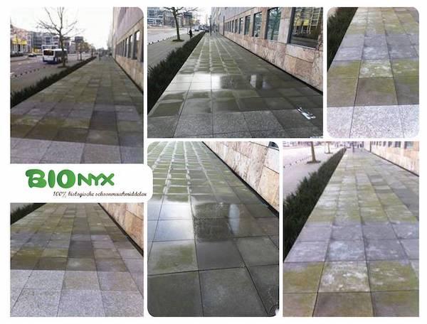 bionyx-terras-opritreiniger2