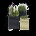bloembakken-tuin-decoratie-directtuinshop-wormerveer